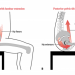 How to perform a seated pelvic tilt